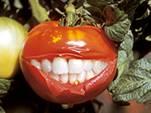 И.В.Ермакова «ГМО. Биологический империализм» (видео)