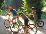 """""""Чёрная метка"""" семье за то, что ребенок один катался на велосипеде"""