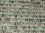 Мировая история ювенальной юстиции: Аргентинский Майдан на деньги США и украденное поколение потомства инакомыслящих. 40-летие трагедии.