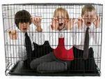 Дума в очередной раз приняла антиконституционный закон – о мегабазе данных на детей